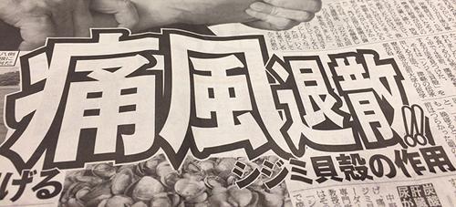 通風 しじみ 新聞広告