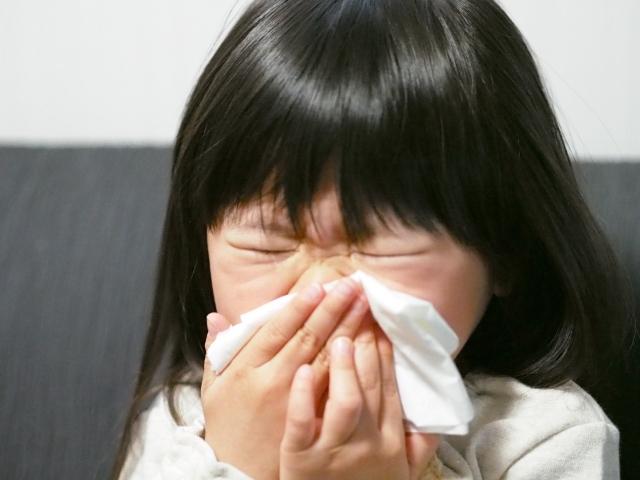 花粉症と頭のかゆみ