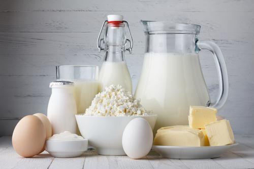 乳酸菌がたくさん含まれている食品