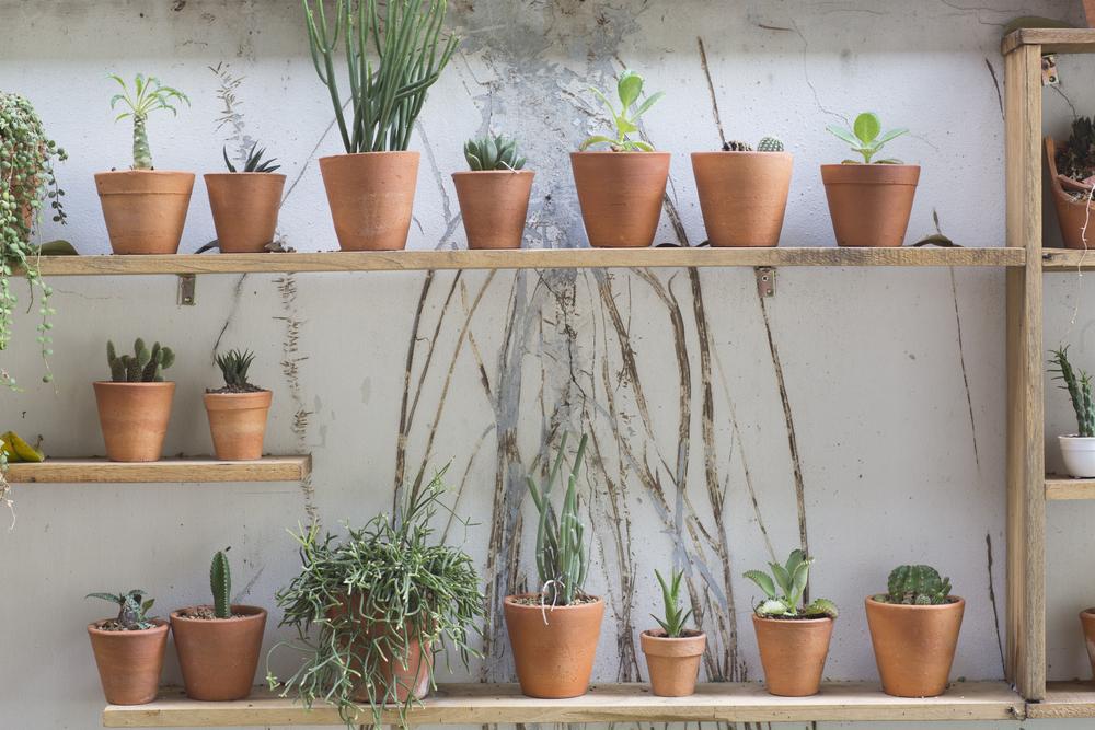 ガーデニング 植木鉢のリメイク