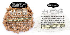 納豆菌・オリゴ糖
