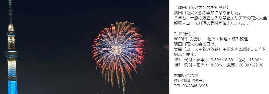 隅田川花火大会 穴場