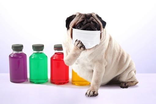 花粉症にマスクは効果なし?マスク選びとやってしまいがちなうっかり