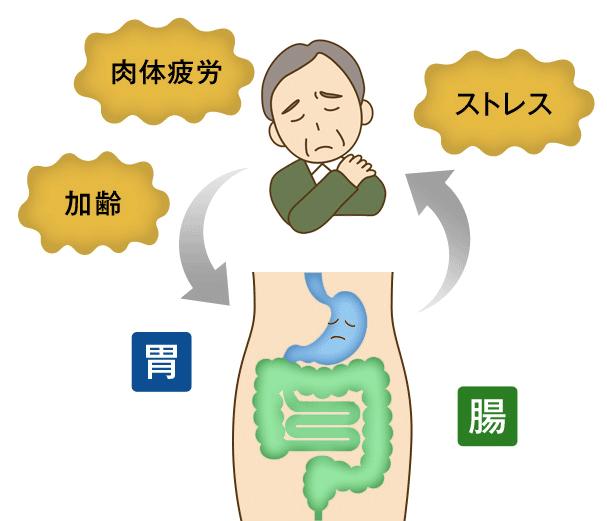 幸健生彩は身体の機能を基礎から整えたい方、胃腸の不調や疲れを治したい方におすすめ