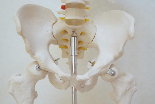 骨盤歪みの原因・骨盤歪みからくる便秘・生理痛:骨盤歪みを治すストレッチ方法