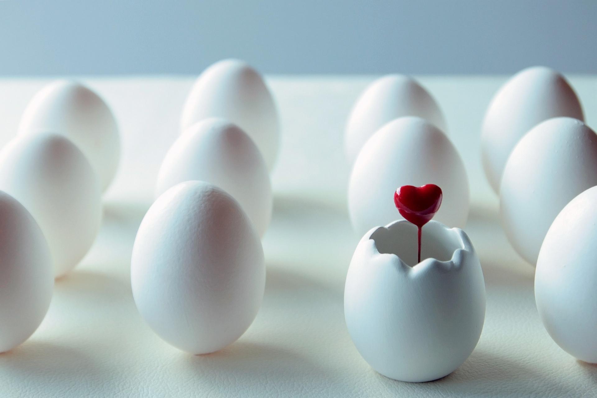 卵殻膜は食べることで美容効果を得られるの?